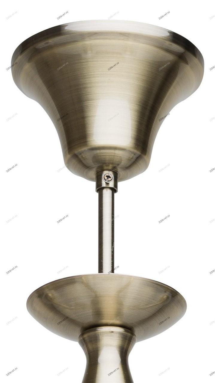 Настольная лампа MW-Light Ракурс 631031401
